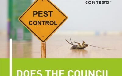 Does the Council Do Pest Control?