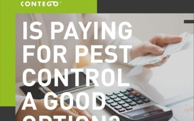 Is Paying More for Pest Control a Good Option?